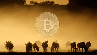 How different African governments have reacted to cryptocurrency